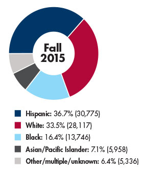 Image of Student Ethnicity Graph